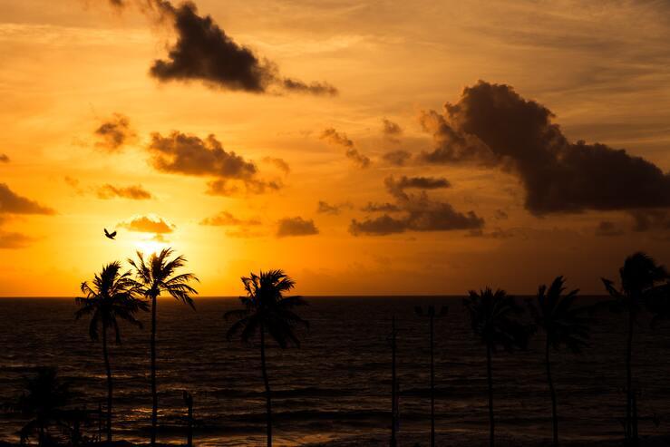 Alagoas - retomada da hotelaria - ABIH-AL